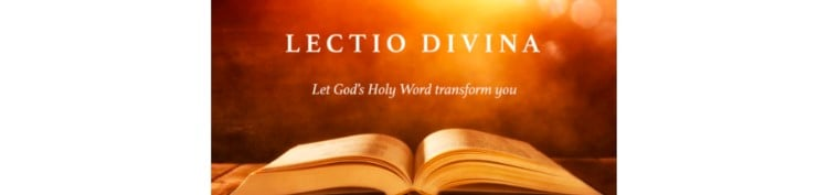 Open Bible  text Let God's Holy word transform you